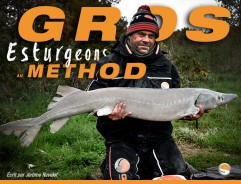 Gros Esturgeon au method feeder