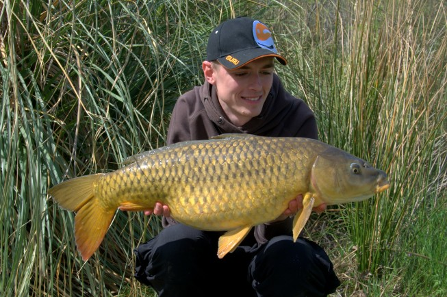 Carpe sauvage au method feeder